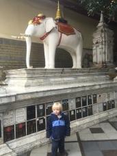 Elephant at Wat Suthep