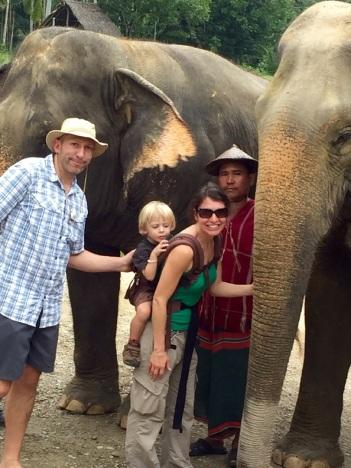 5.1454025600.bye-elephants