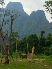 Elephant Hills Elephant Sanctuary