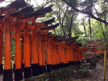 5.1475107200.just-a-few-of-the-thousands-of-torii-gates