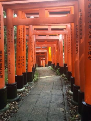 5.1475107200.torii-gate-trail-at-fushimi-inari