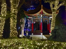 Enoshima Winter Illuminations